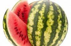 Полезные свойства арбуза и противопоказания