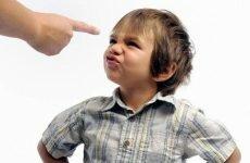 Почему ребёнок не слушается родителей