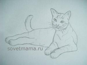 рисунок лежащей кошки