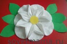 Цветы из ватных дисков своими руками пошаговые фото